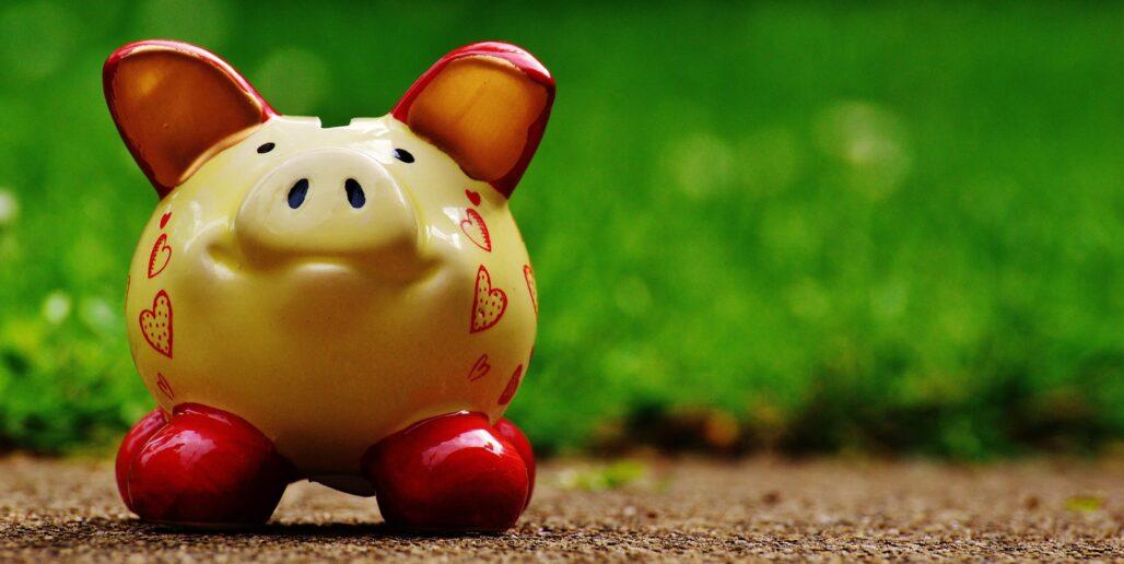Piggy bank crop